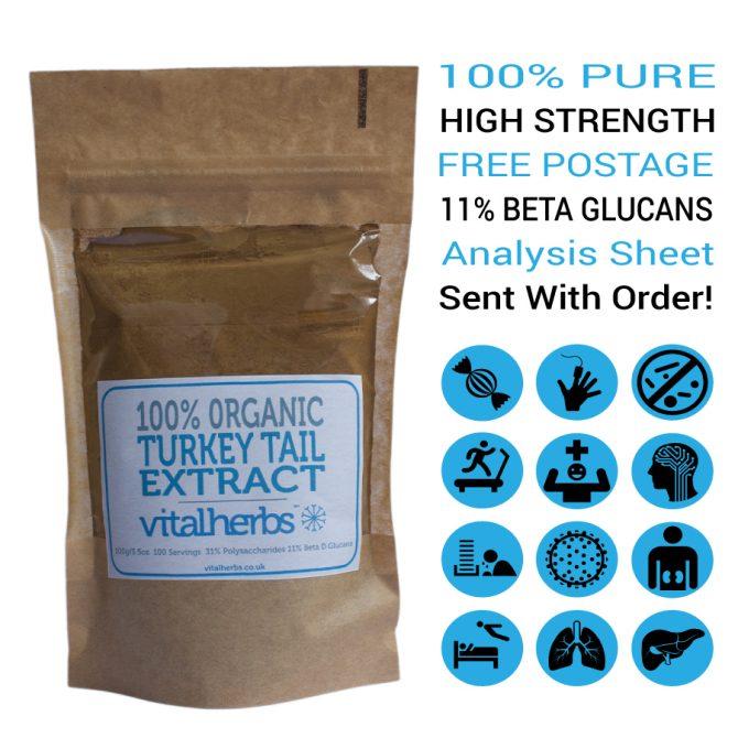Organic Turkey Tail Extract Powder