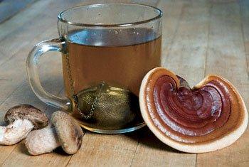 medicinal_mushroom_tea